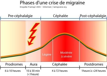Phase de la crise migraineuse