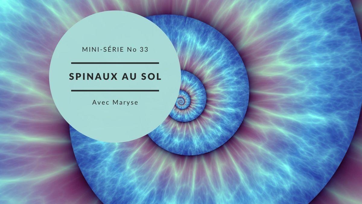 Capsule No 33 Mini série Spinaux au sol