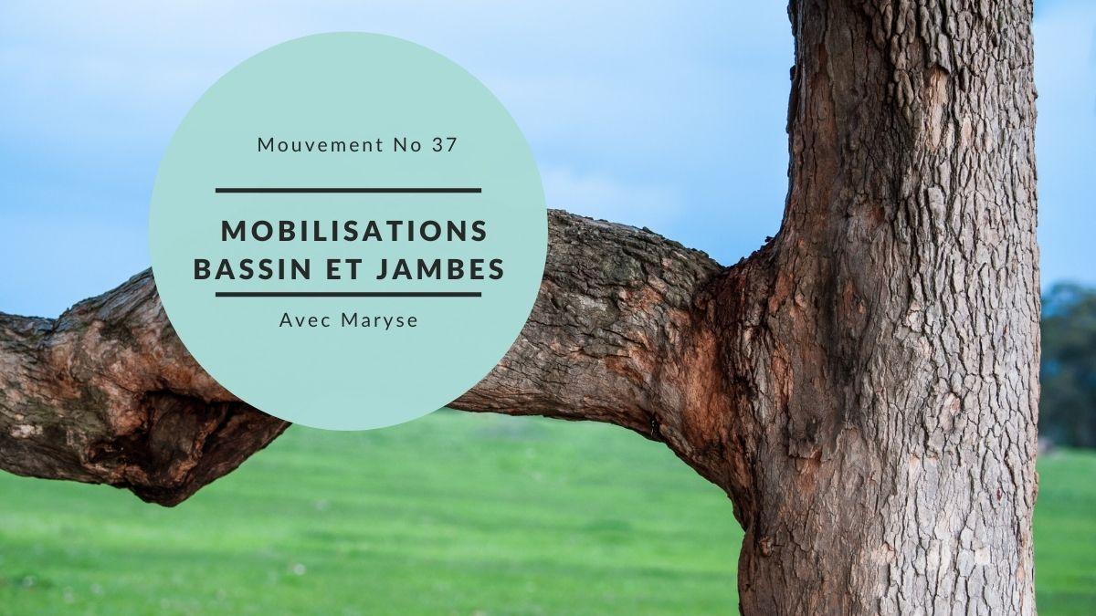 Capsule No 37 Mobilisations du bassin et des jambes