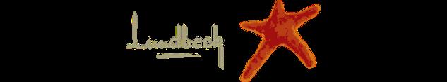 Logo de Lundbeck , partenaire de Migraine Québec